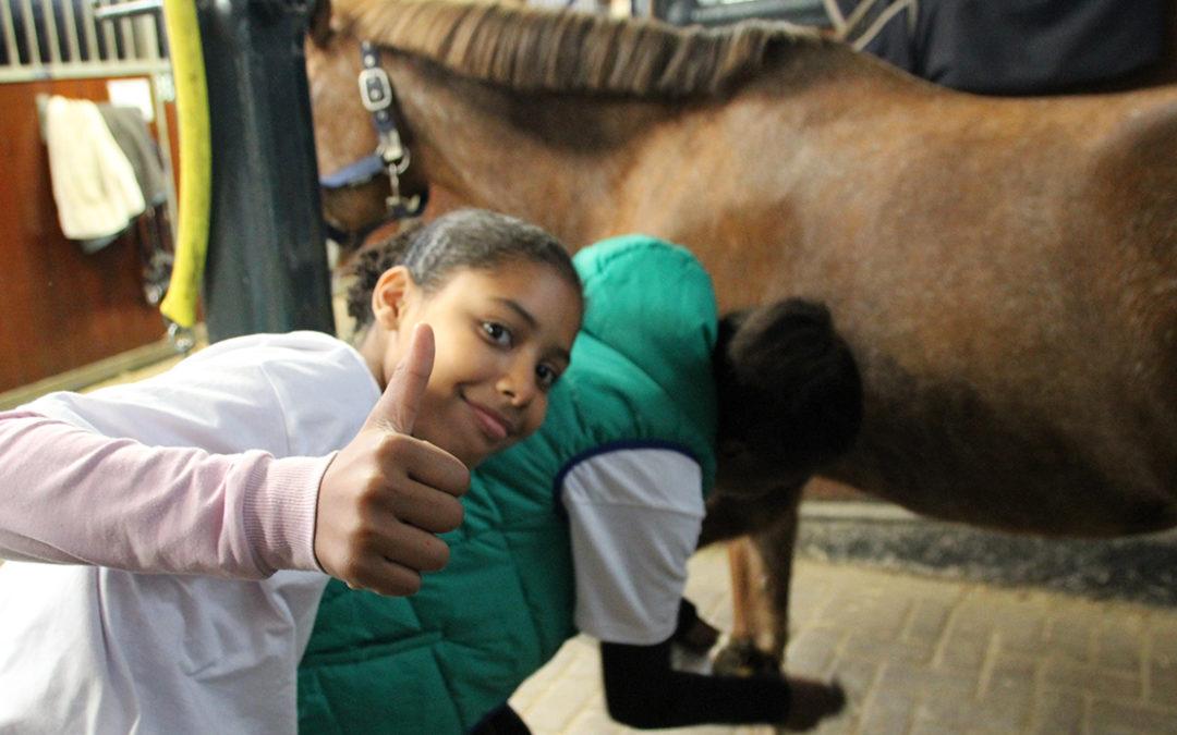 Internationale aandacht voor Werken als een Paard
