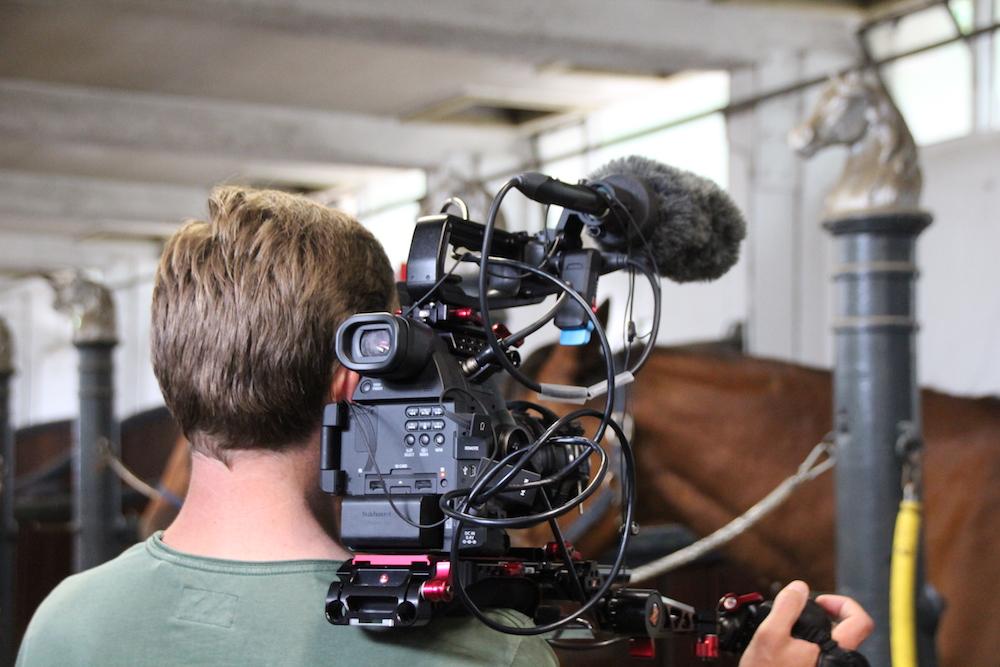 Vervolg Werken als een Paard documentaires