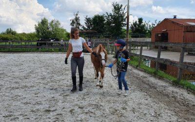 Interview Willemijn, Bergse Veld School van Horizon
