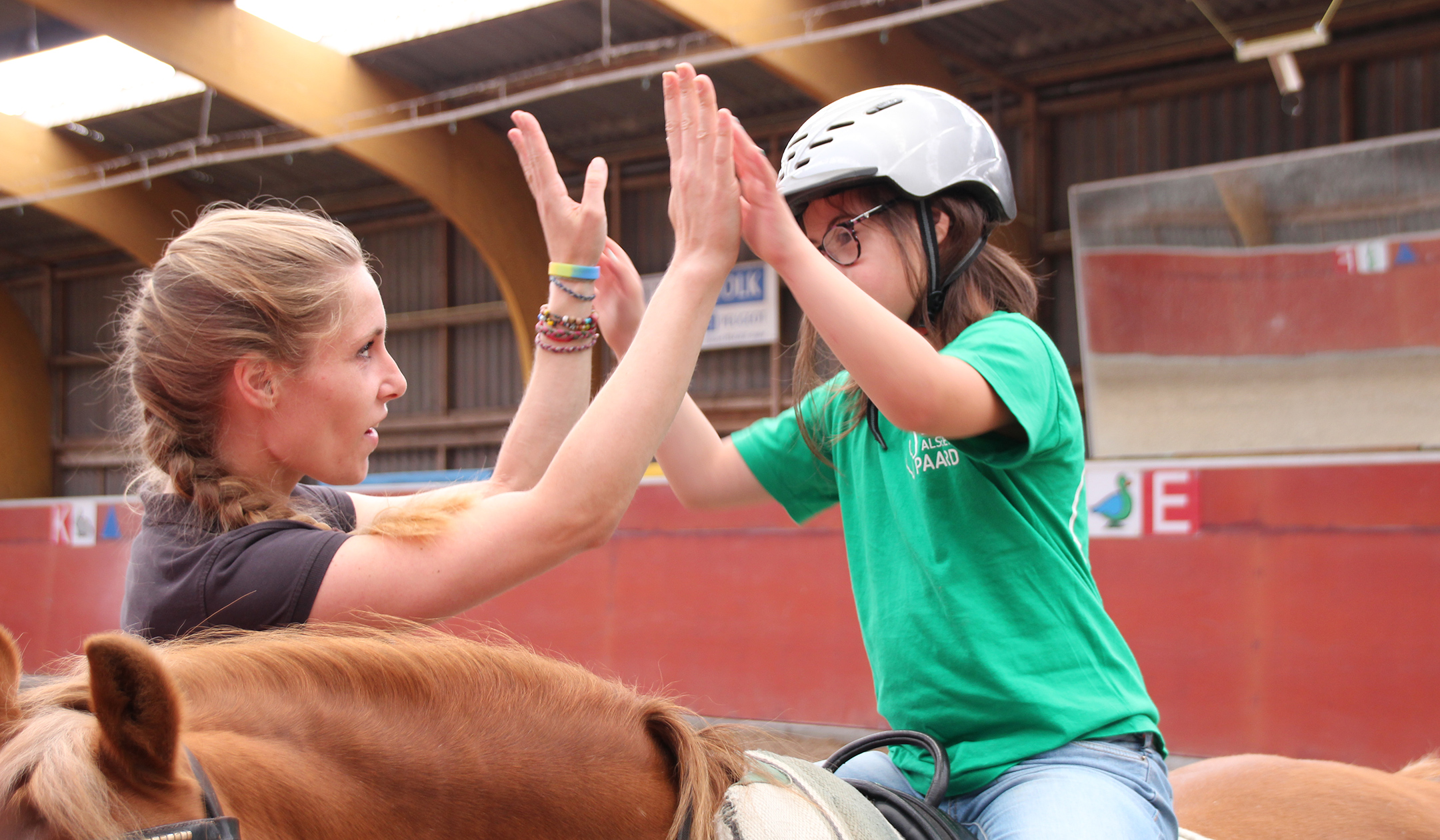 Work like a Horse - Special education